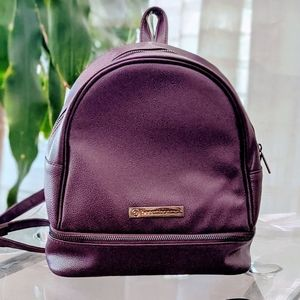 Purple Backpack, Two Compartments